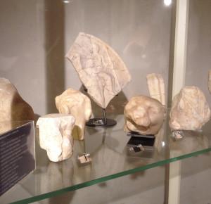 Museo_Arc_5